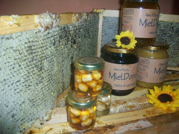 Apicoltura mieldoro Food Product Category: Sugar, Honey, Sweeteners - Country: Italy - Town: avellino
