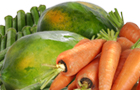 EAST WEST SEED PHILIPPINES Food Product Category: Vegetables, Vegetable Products - Country: Philippines - Town: Bulacan