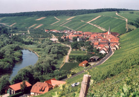 Weingut Am Lump Vineyard by  - Vineyard Country: Germany - Vineyard Region: Franconia/Franken